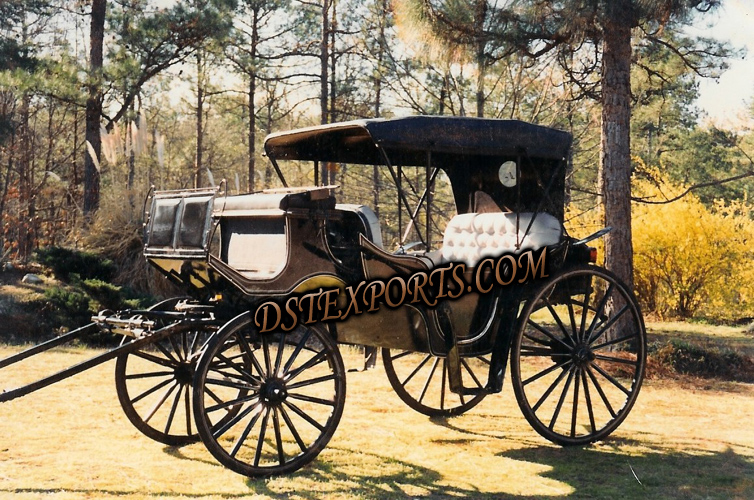 Beautiful Royal Black Horse Carriage