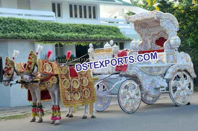 Indian Wedding Decorated Horse Baghi