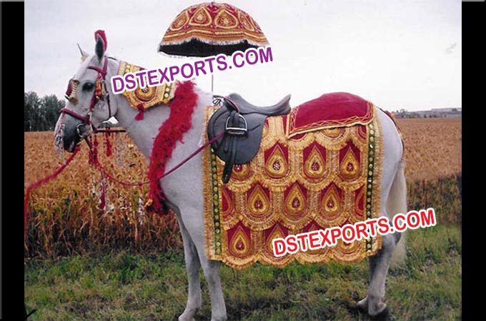 Indian Vivah Decorated Horse Howdah