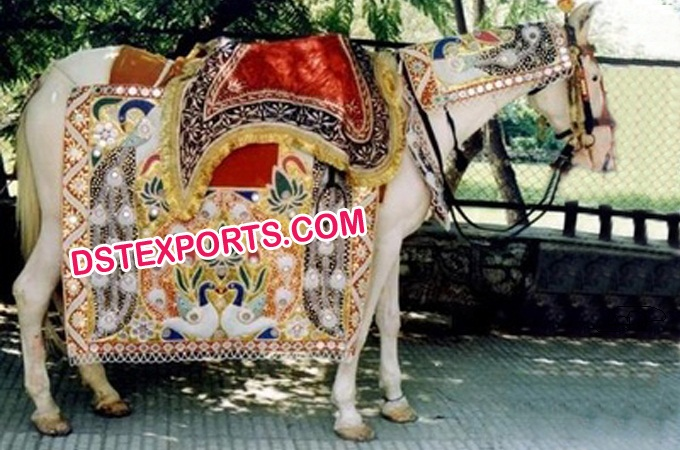 Wedding Baraat Embroidered Horse Costume