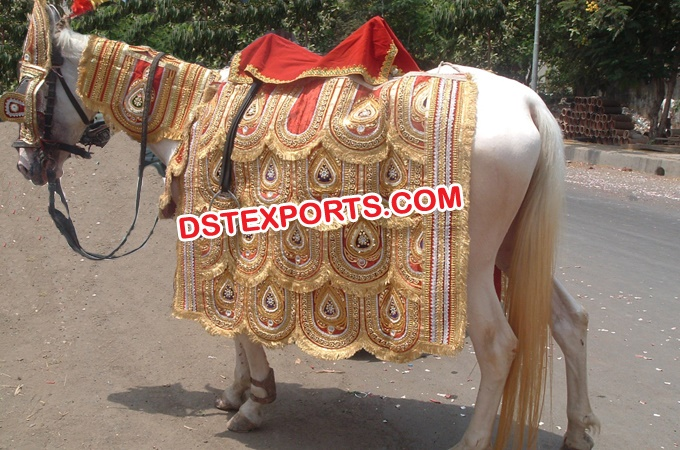 Indian Wedding Embroidered Horse Costume