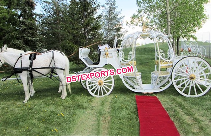 White Pumkin Cinederella Carriage
