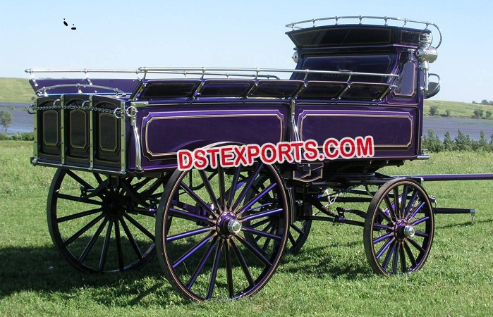 Purple Funeral Horse Drawn Carriage