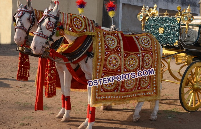 Indian Wedding Horse Wear Dress
