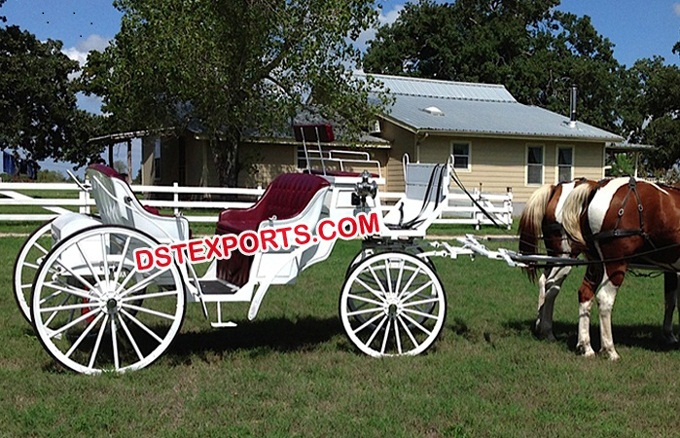 Two Seater Horse Carriage For Hotel Tour