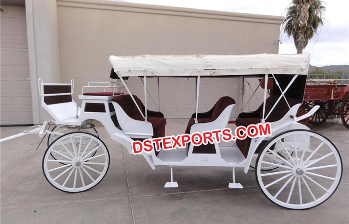 White Horse Drawn Carriages For Hotel Tour