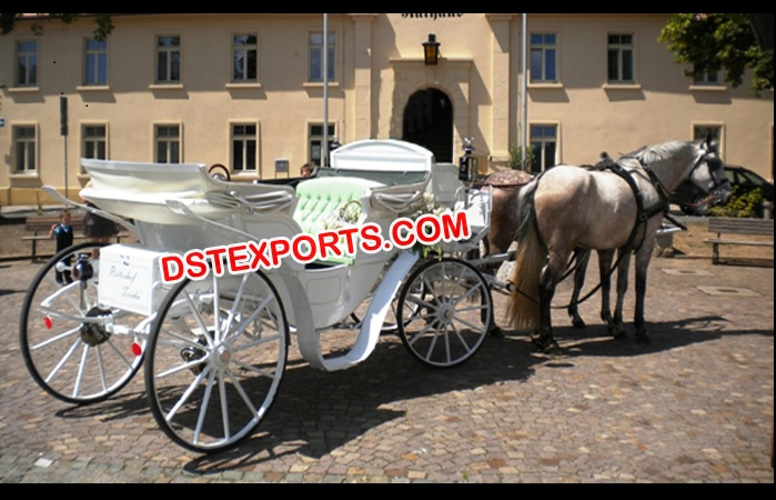 White Victoria Horse Carriage Buggy