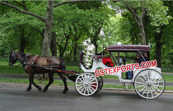 Beautiful Horse Drawn Coaches Carriages