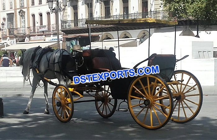 Wedding Limousine Horse Carriage