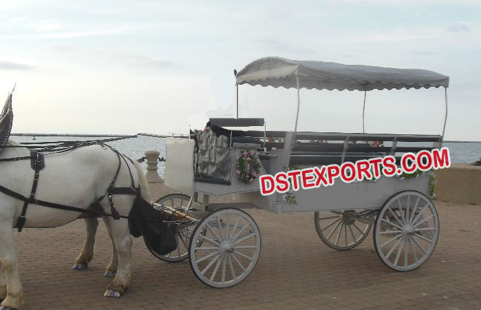 Beautiful Limousine Horse Buggy