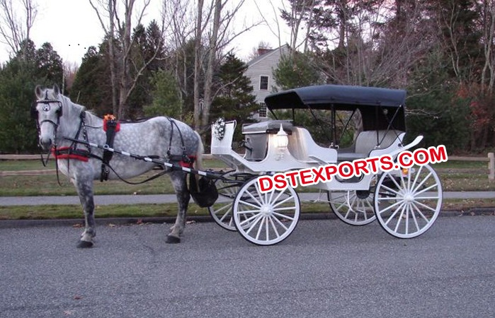 Victoria Horse Buggy For Sale