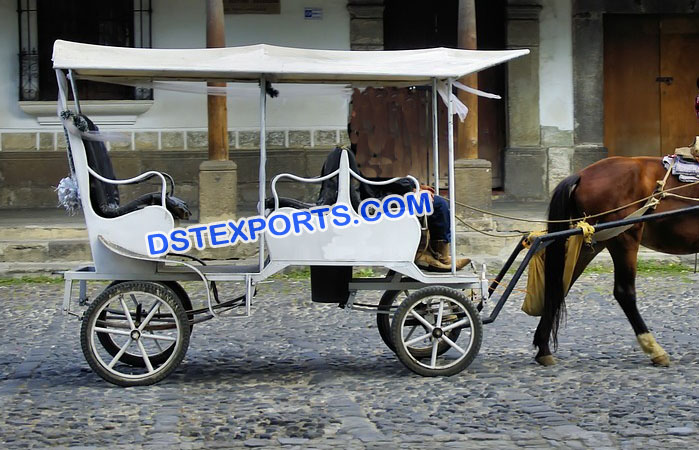 White Limousine Horse Drawn Buggy Carriage
