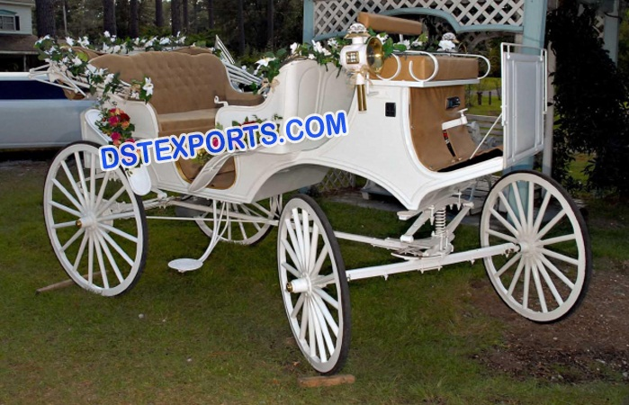 Latest Victoria Horse Buggy