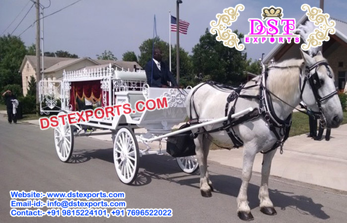 White Funeral Horse Drawn Buggy Carriage