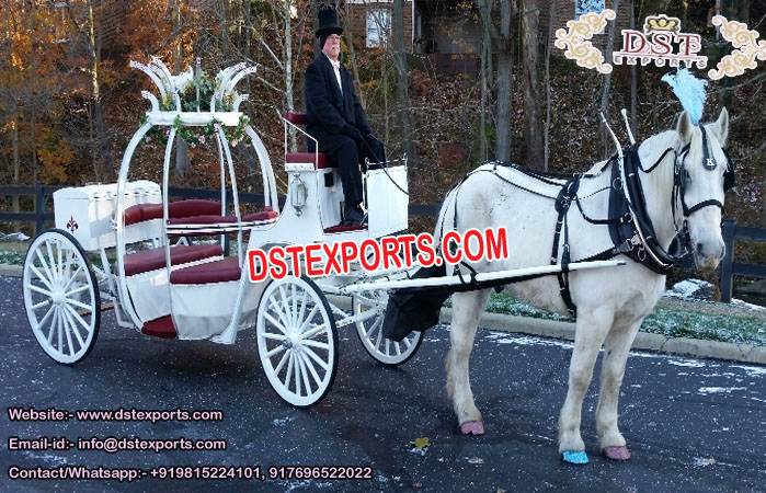 Gorgeous  Wedding princess Cinderella buggy