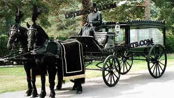 stylish Hearse Carriages