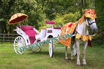 Indian Wedding Horse Carriage
