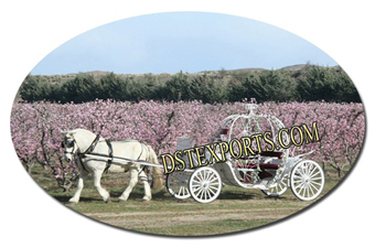 New Spring Field Cinderella Carriages