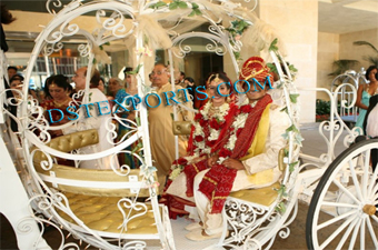 Indo Candian Cinderella Carriage