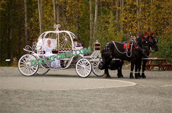 Bride Touring Cinderella Horse Carriages