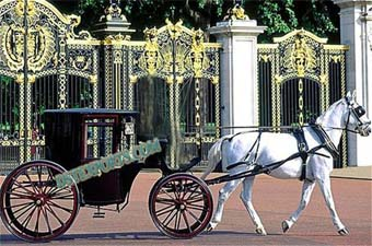 Black Covered Horse Drawn Carriage
