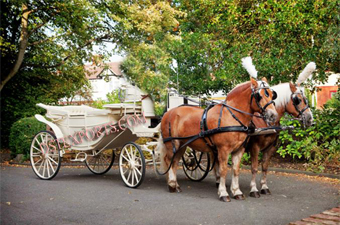 Wedding Horse Drawn Victoria Baghi