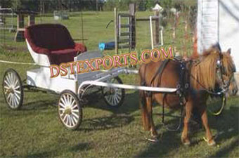 Small Pony Horse Carriage