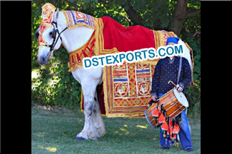 Indian Wedding Decorated Horse Howdah