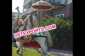 Indian Wedding Baraat Horse Dress