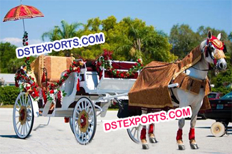 Indian Wedding Baraat Horse Baghi