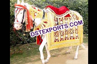Decorated Horse Costume For Indian Wedding Baraat