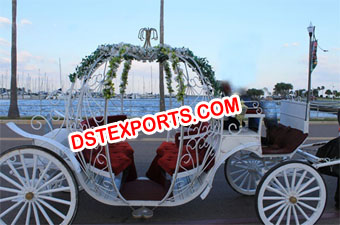Exclusive Wedding Cinderella Horse Carriage