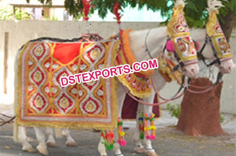 Indian Wedding Barat Horse Decoration