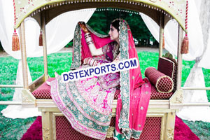 New Design Indian Wedding Palki Doli
