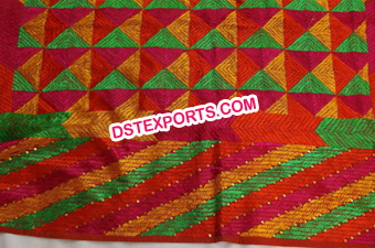 Embroidered Traditional Phulkari Bagh