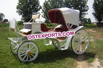 Indian Wedding Two Seater Horse Carriage