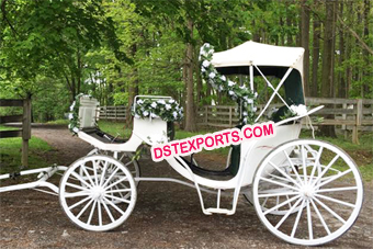 Victoria Horse Carriage