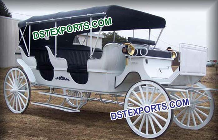 Horse Drawn Limousin Buggy
