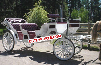 Royal Wedding Horse Buggy
