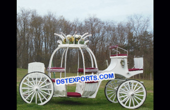 Elegant Cinderella horse Carriage