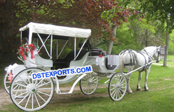 New Horse Drawn Carts Carriage