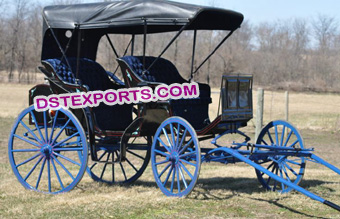 New Two Seater Limousine Carriage