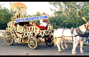 Beautiful Wedding Horse Buggy