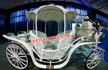 Traditional Lovely Horse Carriage