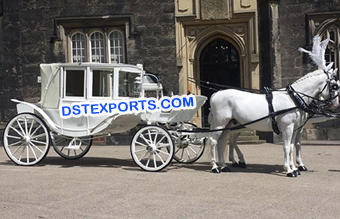 Royal Look Horse Drawn Carriage