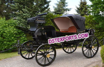 Royal Black Horse Carriage Buggy