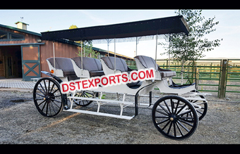 Four Seater Limousine Horse Drawn Buggy