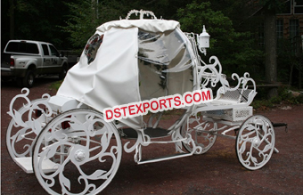Beautiful Cinderella Horse Buggy