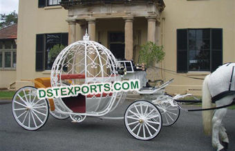 Beautiful Cinderella Wedding Horse Buggy