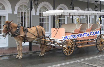 Horse Drawn Limousine Buggy Carriage